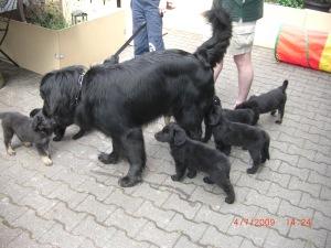 Papa mit den Kindern